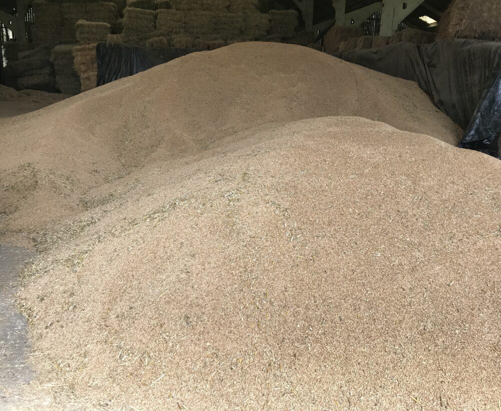 Amarillo harvest 050819